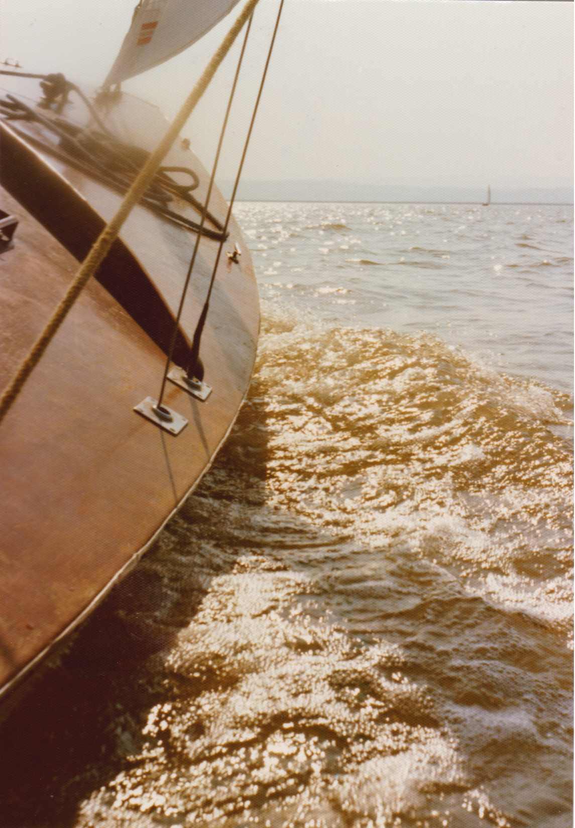 73 segeln-neusiedlersee-2