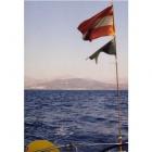 91-segeln-flaggen