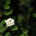 0704-licht-und-schatten