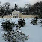 0711-06-rosarium-im-novemberschnee