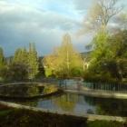 0804-5-fruehlingsmorgen-im-rosarium