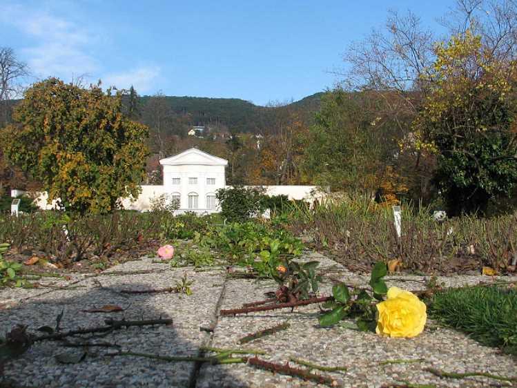 0811-7-rosarium-im-herbst
