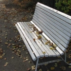 0811-6-herbst-im-park3