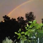 100827-regenbogen