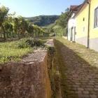20110912-wanderung-gumpoldskirchen