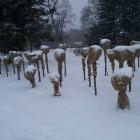 20120207-rosen-im-wintergewand